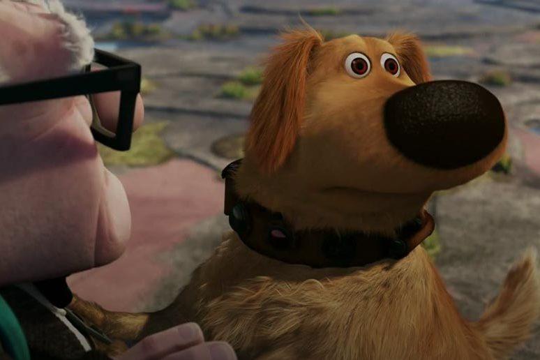 esquilo! O cachorro do Up das altas Aventuras e o foco